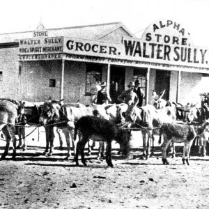 1880 - Walter Sully's & Donkey Team