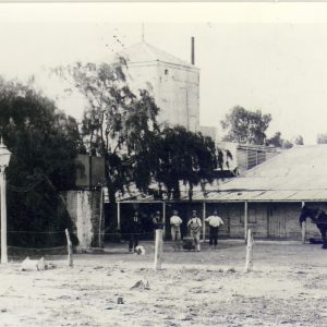 1894 - Lion Brewery
